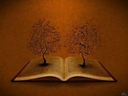 7 Tips for Creating (Poignant) Poetic Metaphors | Power Poetry
